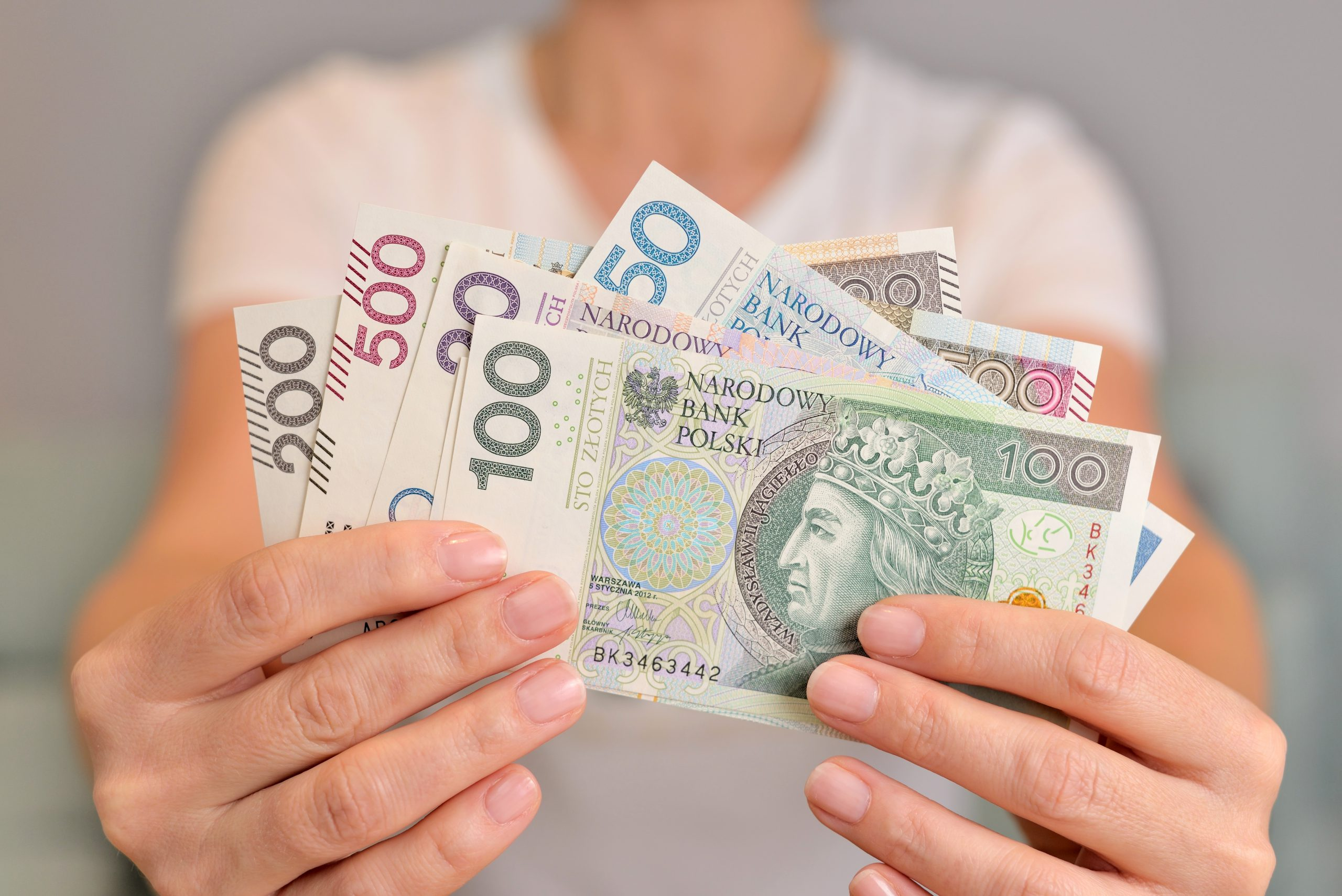 Pożyczka z gwarantem – co to takiego? Dla kogo?