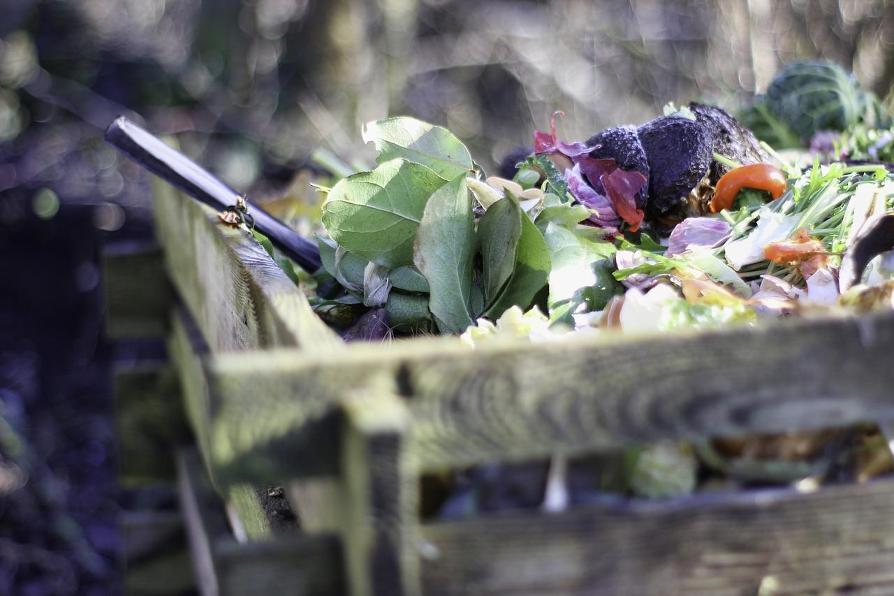 Jak zrobić dobry kompost?